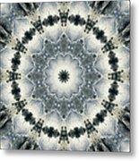 Mandala129 Metal Print