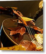 Mandolin Autumn 3 Metal Print