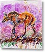 Maned Wolf Metal Print
