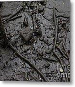 Mangrove Floor Metal Print