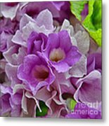 Mansoa Alliacea Metal Print