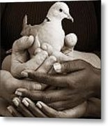 Many Hands Holding A Dove Metal Print
