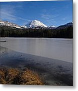 Manzanita Winter Beauty Metal Print