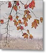 Maple In Gray Sky Metal Print