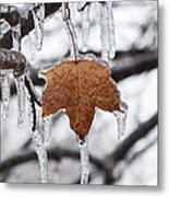 Maple Leaf Forever Metal Print