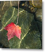 Maple Leaf On Water Metal Print