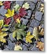 Maple Leaves On Stones Metal Print