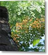 Maple Reflections Metal Print