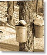 Maple Sap Buckets Metal Print