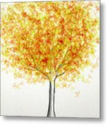 Maple Tree 1 Metal Print