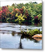Maple Tree On A Rocky Island - V2 Metal Print