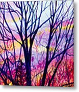 Maple Tree Sunset Metal Print