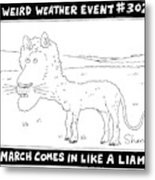 March Comes In Like A Liamb Metal Print