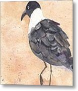 March Of The Laughing Gull Metal Print