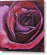 March Rose Metal Print