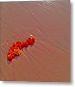 Marigolds On Beach Metal Print