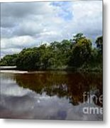 Marimbus River Brazil Reflections 4 Metal Print