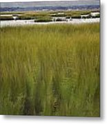 Marsh At Milford Point Metal Print