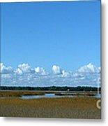Marsh In Panacea Florida Metal Print