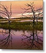 Marsh Oil Painting Metal Print