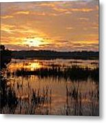 Marsh Sunrise 2 Metal Print