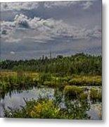 Marsh Under The Clouds Metal Print