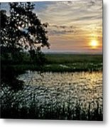 Marsh View Metal Print