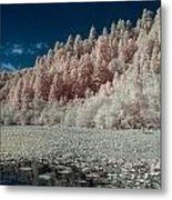 Marshall Pond In Infrared Metal Print