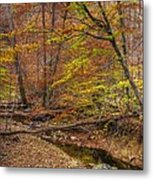 Maryland Country Roads - Autumn Colorfest No. 7 - Catoctin Mountains Frederick County Md Metal Print