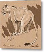 Masai Lioness Metal Print by Aaron Blaise