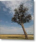 Masai Mara National Reserve Metal Print