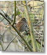 Mathew 6 Vs 26 Thrush Metal Print