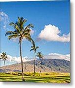 Maui Hawaii Metal Print