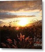 Maui Kulamalu Sunset Metal Print