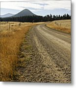 Mcclellan Creek Rd Helena Montana Metal Print by Dana Moyer