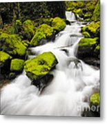 Mccord Creek, Columbia Gorge Metal Print