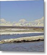 Mckinley And Friends Metal Print