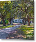 Mcleod Plantation Metal Print