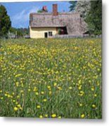 Meadow Cottage Metal Print by Stephen Norris