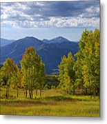 Meadow Highlights Metal Print