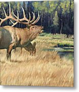 Meadow Music Metal Print