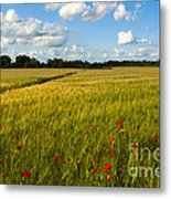 Meadow Of Poppies Metal Print