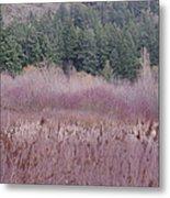 Meadow View Metal Print