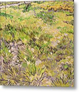 Meadow With Butterflies Metal Print
