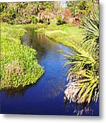 Meandering Stream Metal Print