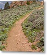 Medicine Bow Blair Trail #6 Metal Print