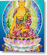Medicine Buddha 7 Metal Print