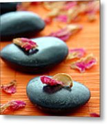 Meditation Zen Path Metal Print