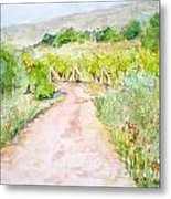 Medjugorje Path To Apparition Hill Metal Print