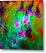 Medusas On Fire 5d24939 P128 Metal Print by Wingsdomain Art and Photography